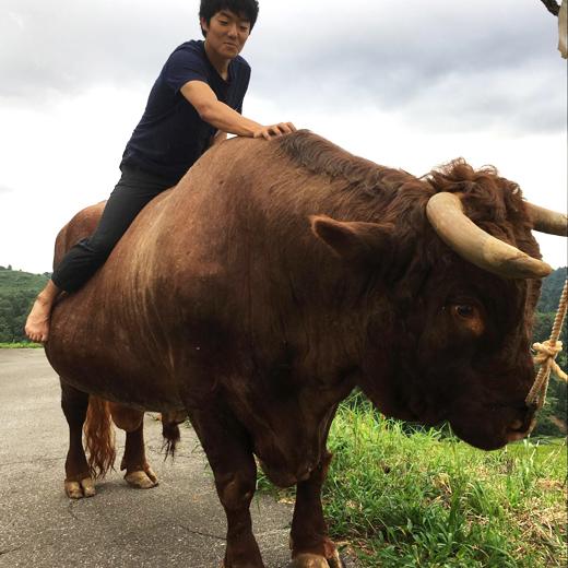 闘牛の背に乗る筆者